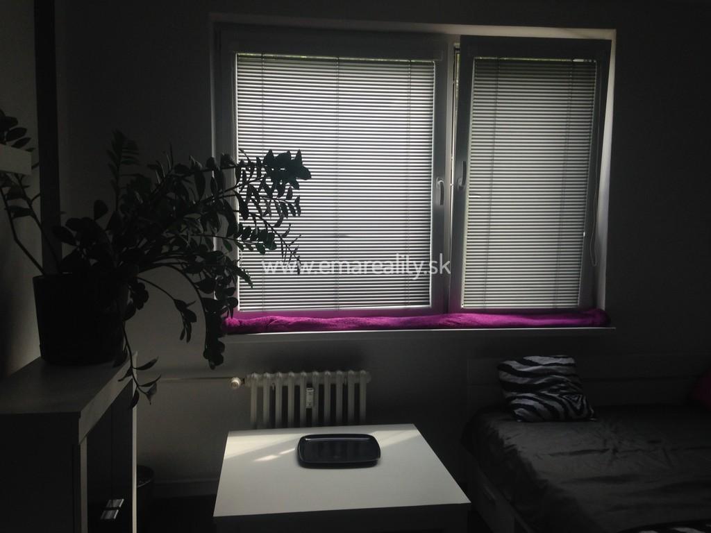 1 izb. byt, Juh, 330,- € s energiami, voľný ihneď
